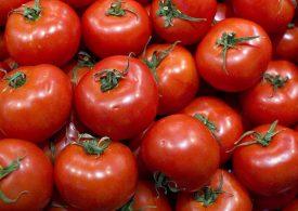 Golpe a exportadores de tomate