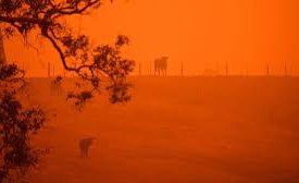 El infierno en Australia