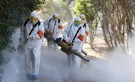 La siguiente pandemia