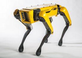 NASA quiere explorar Marte con perros robot