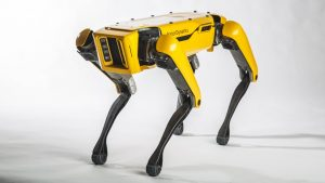 perros robot a Marte