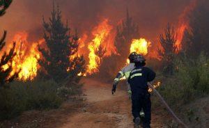 Diputados, plantean fortalecer combate de incendios